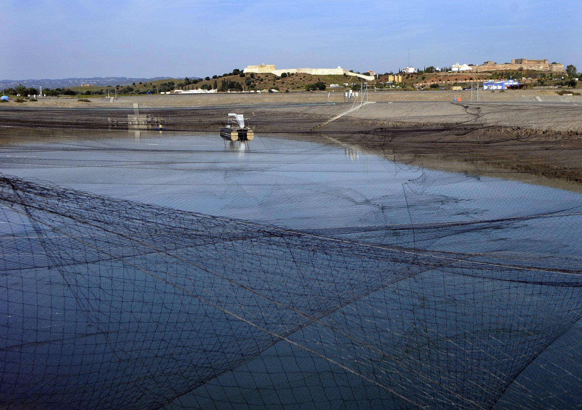 Atlantik Fish | Aquacultura